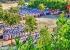 Đoàn trường THPT Nông Sơn tưng bừng tổ chức các hoạt động ngày khai giảng năm học mới